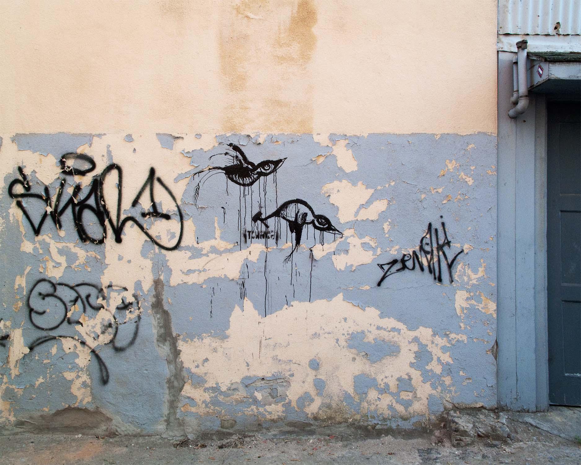 oiseaux_007